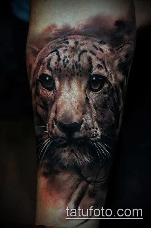 фото тату барс №966 - прикольный вариант рисунка, который успешно можно использовать для доработки и нанесения как тату барс на плече
