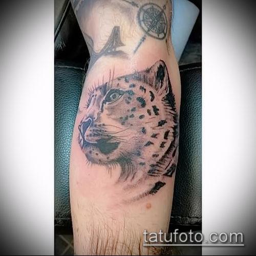 фото тату барс №424 - классный вариант рисунка, который хорошо можно использовать для переделки и нанесения как тату барс на спине