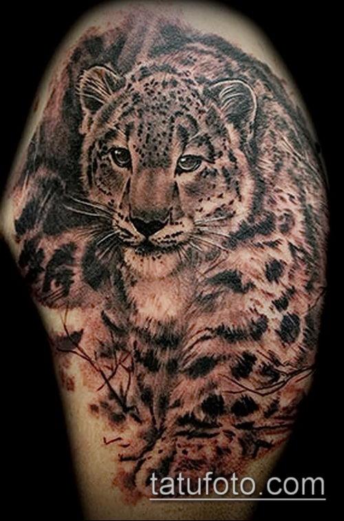 фото тату барс №664 - эксклюзивный вариант рисунка, который хорошо можно использовать для доработки и нанесения как тату барса на спине