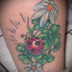 фото тату божья коровка №151 - эксклюзивный вариант рисунка, который удачно можно использовать для преобразования и нанесения как тату божья коровка на клевере