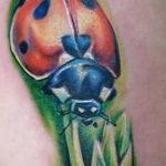 фото тату божья коровка №912 - уникальный вариант рисунка, который удачно можно использовать для доработки и нанесения как тату божья коровка на попе