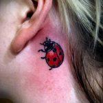 фото тату божья коровка №893 - классный вариант рисунка, который успешно можно использовать для переработки и нанесения как тату божья коровка на ромашке