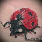 фото тату божья коровка №779 - интересный вариант рисунка, который хорошо можно использовать для преобразования и нанесения как тату божья коровка внизу живота