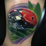 фото тату божья коровка №527 - достойный вариант рисунка, который успешно можно использовать для преобразования и нанесения как тату божья коровка на руке