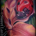 фото тату божья коровка №954 - уникальный вариант рисунка, который успешно можно использовать для переделки и нанесения как тату божья коровка с тенью