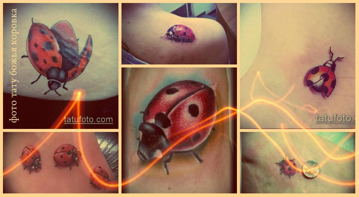 Фото тату божья коровка - достойные варианты готовых тату для выбора и ознакомления