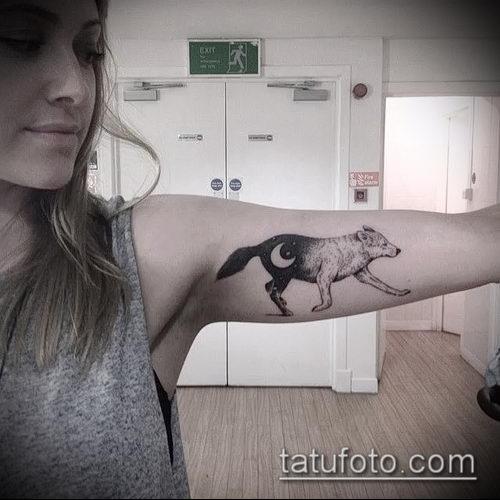 фото тату волчица №519 - достойный вариант рисунка, который легко можно использовать для переделки и нанесения как тату волчица и пряности