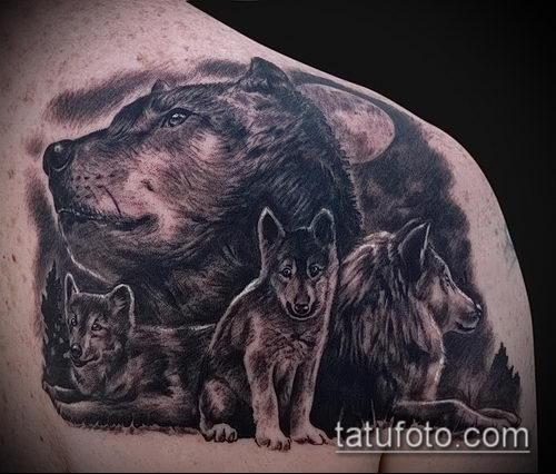фото тату волчица №252 - классный вариант рисунка, который хорошо можно использовать для преобразования и нанесения как парное тату волк и волчица