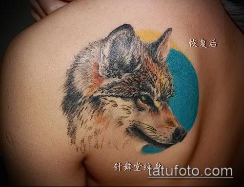 фото тату волчица №127 - уникальный вариант рисунка, который успешно можно использовать для переработки и нанесения как тату волчица и волчата