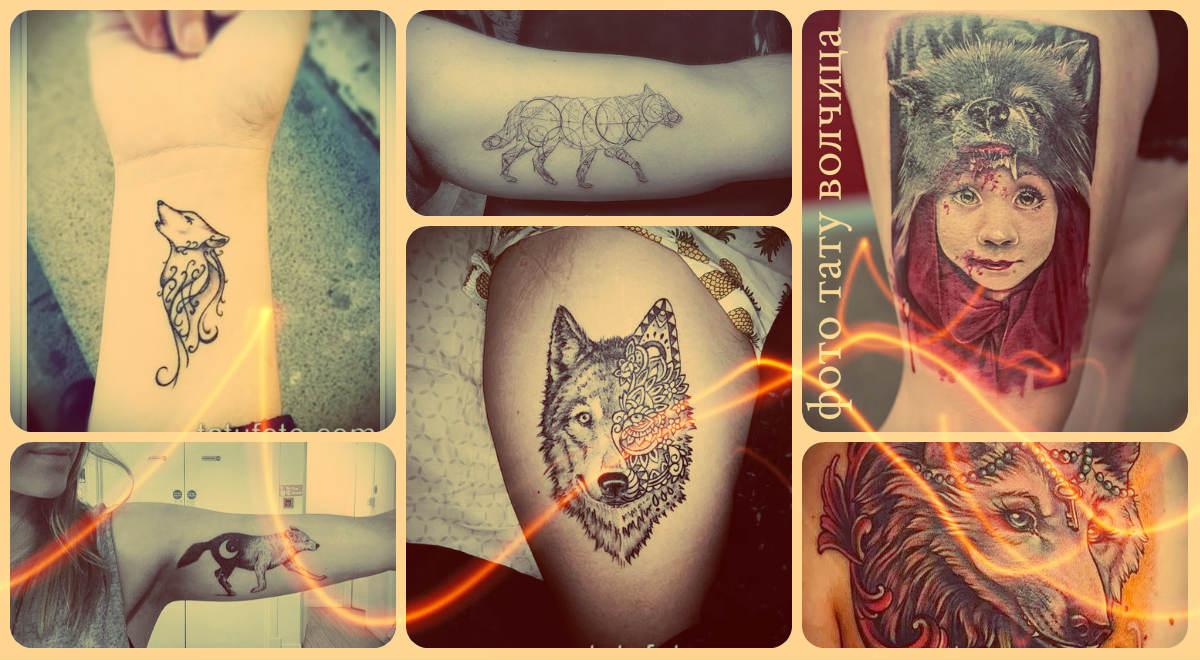 Фото тату волчица - оригинальные варианты татуировок для создания своего рисунка тату