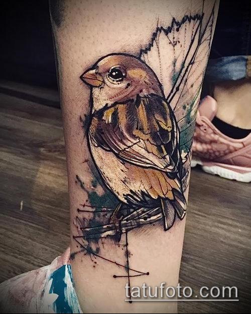 Тату птиц 1061 лучших фото татуировок 2018 года