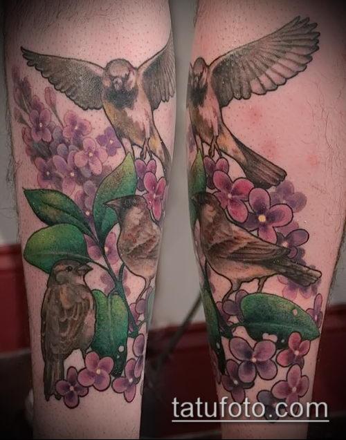 фото тату воробей №266 - классный вариант рисунка, который хорошо можно использовать для преобразования и нанесения как тату воробей на ветке