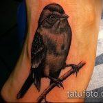 фото тату воробей №606 - прикольный вариант рисунка, который успешно можно использовать для доработки и нанесения как тату воробей на руке
