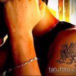 фото тату грифон №893 - прикольный вариант рисунка, который удачно можно использовать для переработки и нанесения как тату грифон с щитом