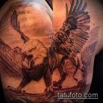 фото тату грифон №342 - достойный вариант рисунка, который удачно можно использовать для переделки и нанесения как тату грифон на спине