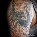фото тату грифон №383 - прикольный вариант рисунка, который хорошо можно использовать для переработки и нанесения как тату грифон на плече