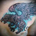 фото тату грифон №493 - интересный вариант рисунка, который хорошо можно использовать для переработки и нанесения как тату грифон на всю спину