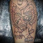 фото тату грифон №348 - уникальный вариант рисунка, который хорошо можно использовать для переделки и нанесения как тату грифон на всю спину