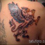 фото тату грифон №910 - крутой вариант рисунка, который хорошо можно использовать для доработки и нанесения как тату грифон на предплечье