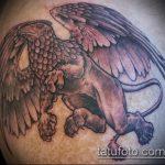 фото тату грифон №7 - прикольный вариант рисунка, который удачно можно использовать для переработки и нанесения как тату грифон на спине