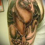 фото тату грифон №817 - классный вариант рисунка, который успешно можно использовать для переработки и нанесения как тату грифон с щитом