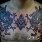 фото тату грифон №192 - эксклюзивный вариант рисунка, который легко можно использовать для переработки и нанесения как тату грифон голова