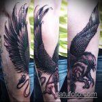 фото тату грифон №967 - классный вариант рисунка, который успешно можно использовать для переработки и нанесения как тату грифон скифы