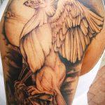 фото тату грифон №380 - крутой вариант рисунка, который хорошо можно использовать для доработки и нанесения как тату грифон на предплечье