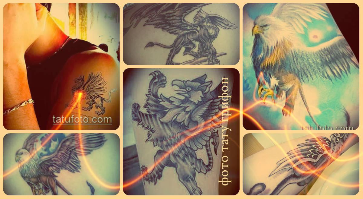 Фото тату грифон - готовые татуировки для основы новой