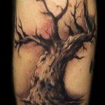 фото тату дерево №412 - интересный вариант рисунка, который удачно можно использовать для переработки и нанесения как тату змея на дереве