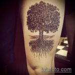 фото тату дерево №361 - интересный вариант рисунка, который удачно можно использовать для переделки и нанесения как тату ветка дерева