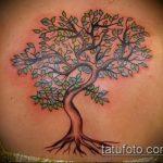 фото тату дерево №361 - классный вариант рисунка, который удачно можно использовать для преобразования и нанесения как тату мертвое дерево