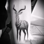 фото тату дерево №864 - интересный вариант рисунка, который удачно можно использовать для переработки и нанесения как тату дерево на плече