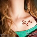 фото тату дерево №72 - крутой вариант рисунка, который успешно можно использовать для преобразования и нанесения как тату дерево акварель