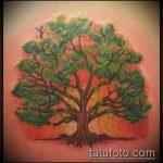 фото тату дерево №494 - классный вариант рисунка, который хорошо можно использовать для переделки и нанесения как тату сухое дерево