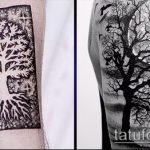 фото тату дерево №276 - эксклюзивный вариант рисунка, который успешно можно использовать для преобразования и нанесения как тату дерево на животе