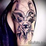 фото тату козел №818 - классный вариант рисунка, который легко можно использовать для преобразования и нанесения как тату козел на запястье