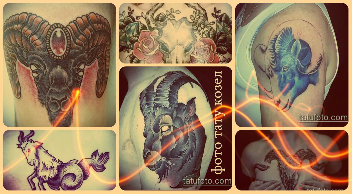 Фото тату козел - достойные варианты выполненных татуировок с рисунком козла для выбора