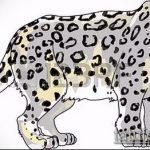 эскиз тату барс №803 - крутой вариант рисунка, который успешно можно использовать для доработки и нанесения как тату барс на спине