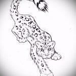 эскиз тату барс №991 - классный вариант рисунка, который удачно можно использовать для преобразования и нанесения как тату барс на лопатке
