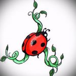 эскиз тату божья коровка №42 - достойный вариант рисунка, который легко можно использовать для переделки и нанесения как тату божья коровка на клевере