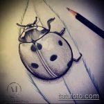 эскиз тату божья коровка №105 - прикольный вариант рисунка, который хорошо можно использовать для переработки и нанесения как тату божья коровка на шее