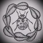 эскиз тату божья коровка №233 - интересный вариант рисунка, который хорошо можно использовать для преобразования и нанесения как тату божья коровка маленькая