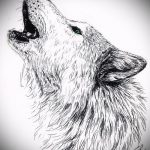 эскиз тату волчица №453 - крутой вариант рисунка, который удачно можно использовать для доработки и нанесения как тату волчица на девушке