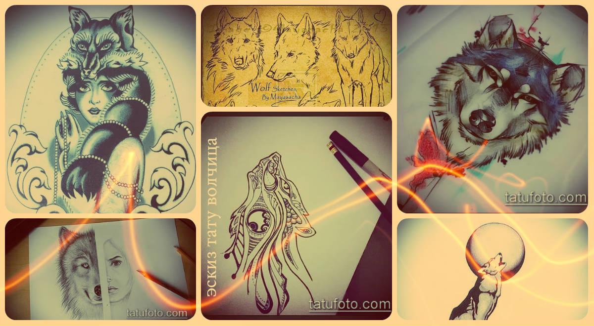 Эскизы тату волчица - интересные рисунки для уникального варианта татуировки