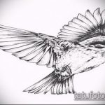 эскиз тату воробей №82 - крутой вариант рисунка, который хорошо можно использовать для переделки и нанесения как тату птица счастья