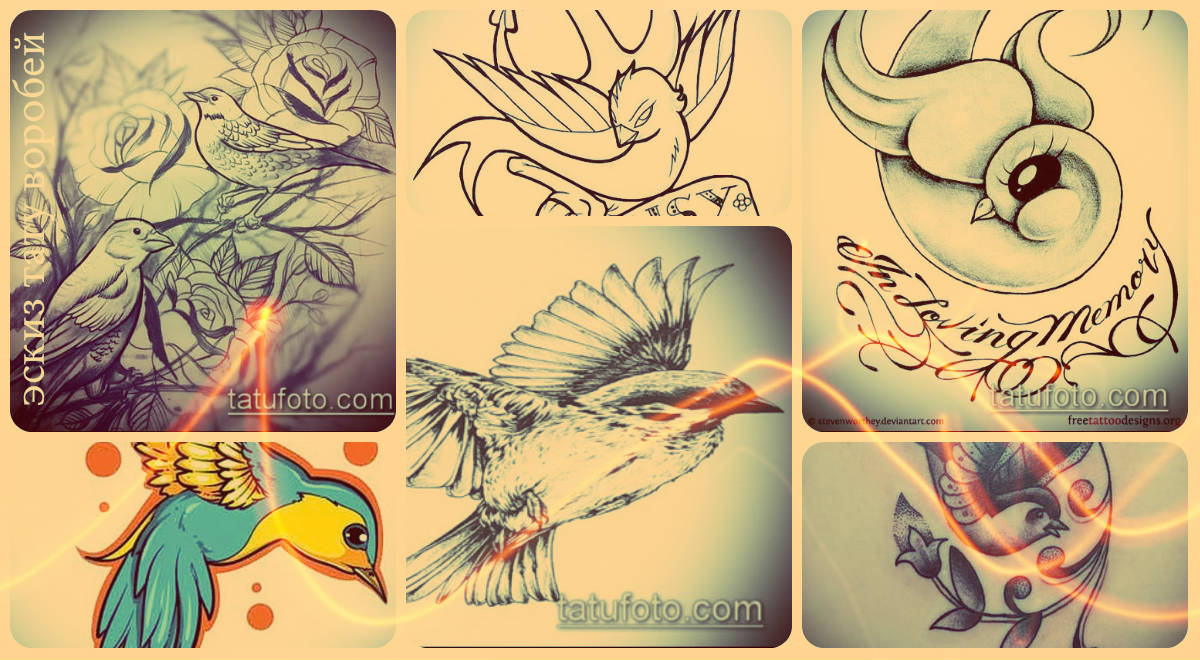 Эскизы тату воробей - варианты рисунков для создания идеи