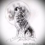 эскиз тату воющий волк №941 - эксклюзивный вариант рисунка, который удачно можно использовать для переделки и нанесения как тату воющий волк на предплечье