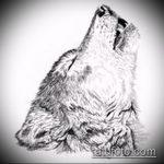 эскиз тату воющий волк №379 - крутой вариант рисунка, который успешно можно использовать для переделки и нанесения как тату воющий волк на предплечье