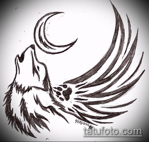 фото волков рисунки